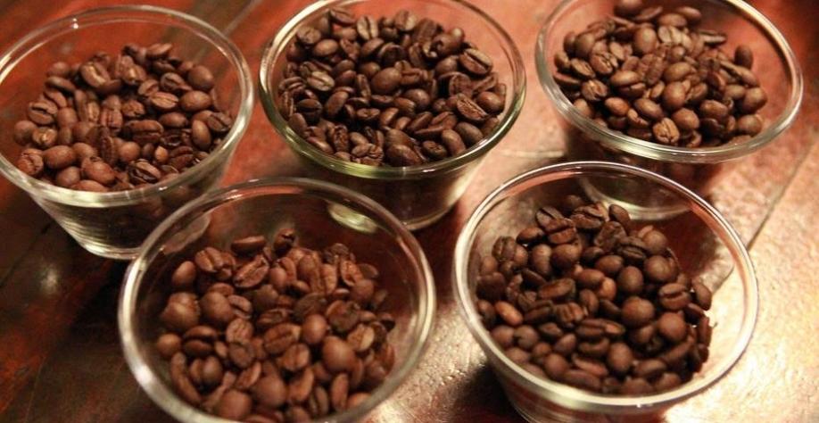 Importadores De Cafe Recebem O Triplo Do Que Ganham Os Produtores