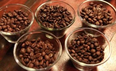 Importadores de café recebem o triplo do que ganham os produtores do grão