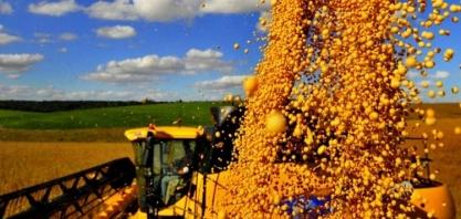 Safra de soja do Brasil vai ser tão