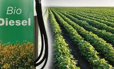 Biodiesel eleva moagem de soja para 43 milhões de toneladas em 2018