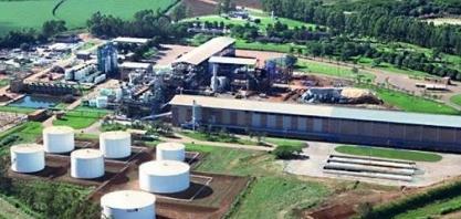 IFC empresta US$ 55 milhões à usina Jalles Machado