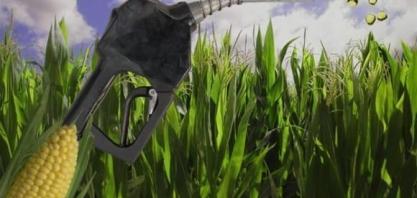 Resíduos elevam receitas no etanol de milho