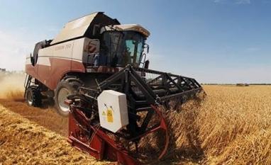 Brasil autoriza importação de trigo russo por moinhos do Norte e Nordeste