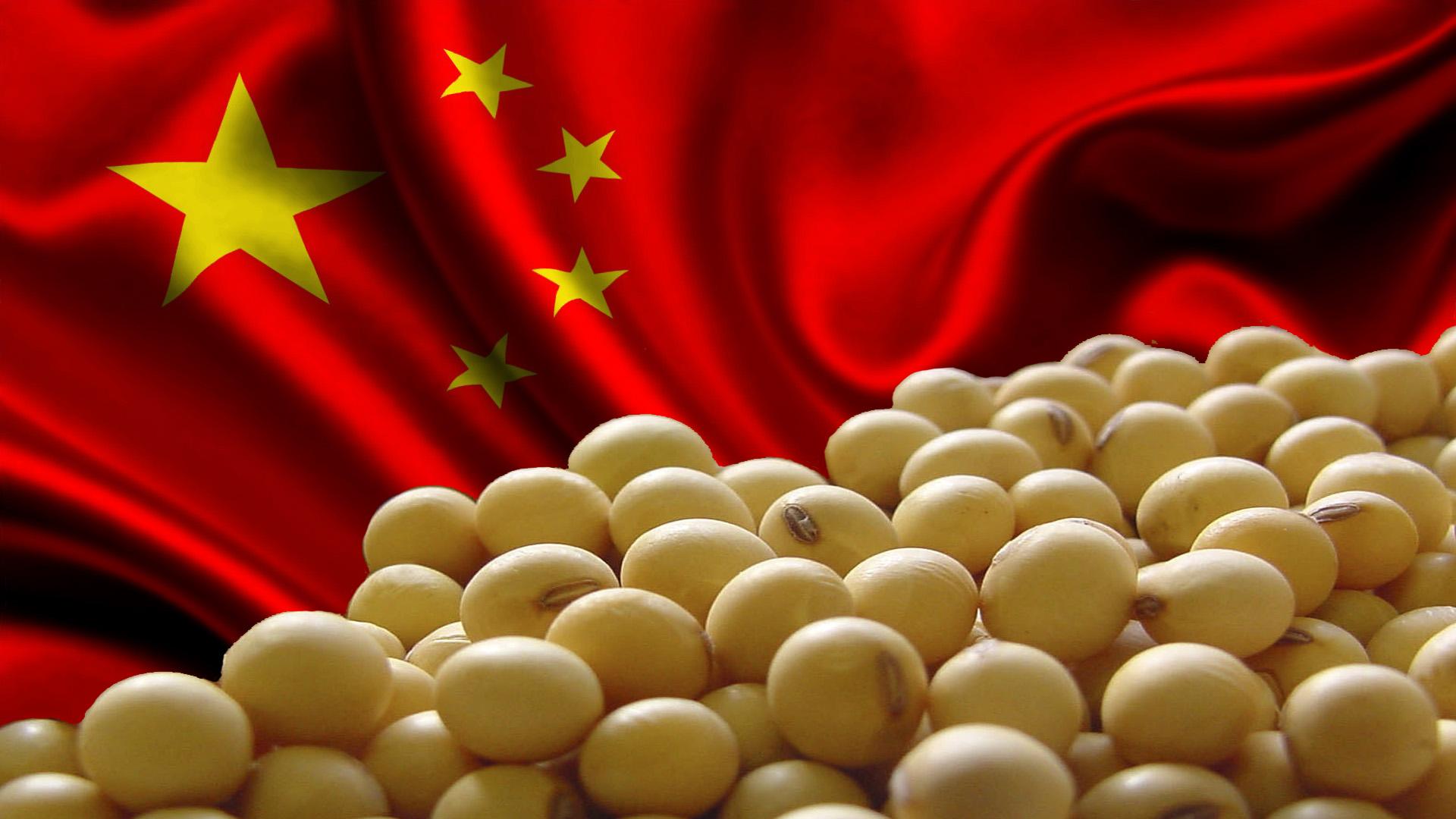 EUA e China provocam tensão no mercado de soja   Brasilagro