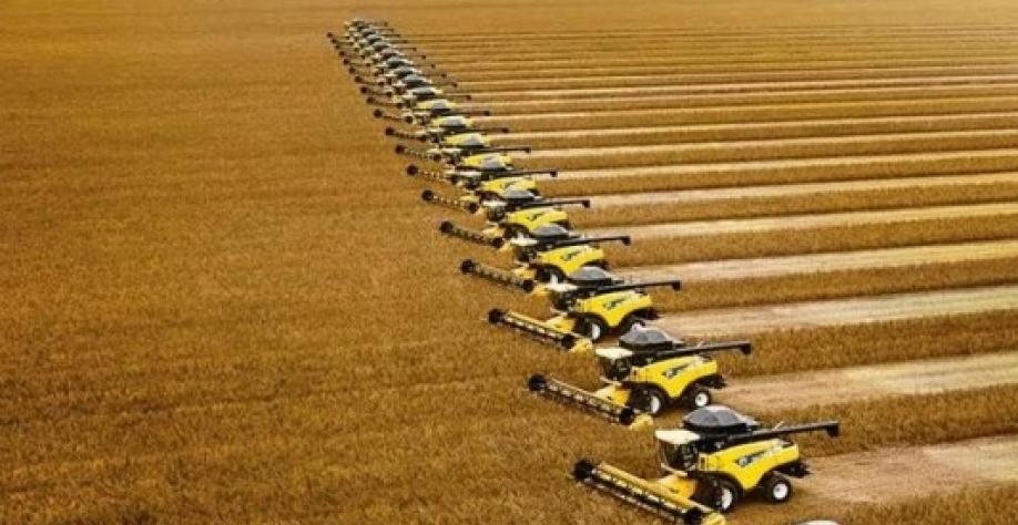 """Agricultura vive """"tempestade perfeita"""" neste ano"""