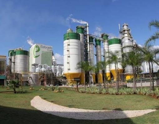 MS:Obra com investimento de R$ 350 mi em usina de biomassa começa em abril