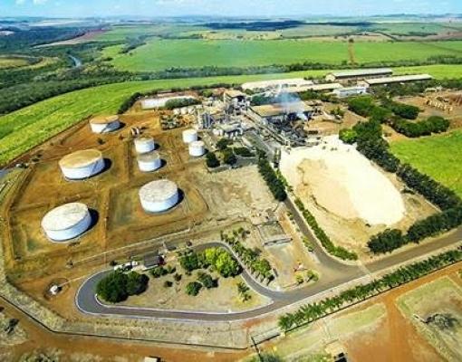 Usina Batatais deve moer 4,150 mi de t de cana na safra 2020/21   Brasilagro