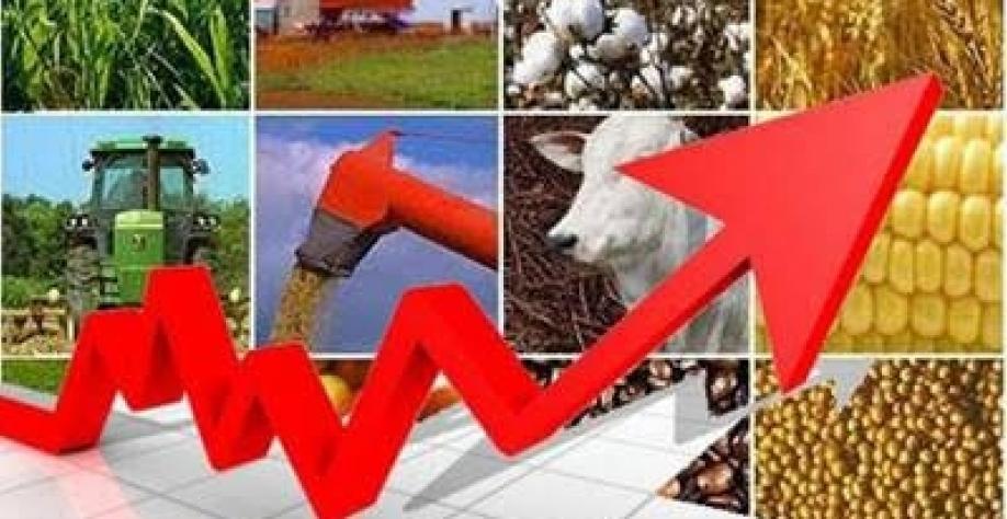 Produtividade no campo melhora, e Ipea eleva PIB do setor
